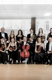 Wiener Solisten Orchester